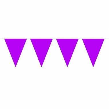 Feestwinkel | 1x mini vlaggetjeslijn slingers paars 300 cm morgen ams