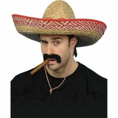 Feestwinkel | 2 stuks gekleurde mexicaanse sombrero morgen amsterdam
