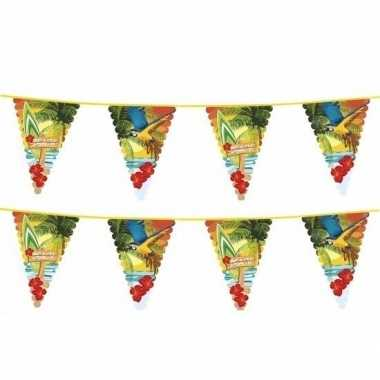Feestwinkel | 2x hawaii thema vlaggenlijn met grote vlaggetjes morgen