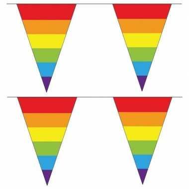 Feestwinkel | 2x regenboog slingers met puntvlaggetjes 40 meter morge