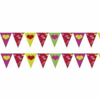 Feestwinkel | 2x stuks valentijn vlaggenlijnen slingers 4 meter per s