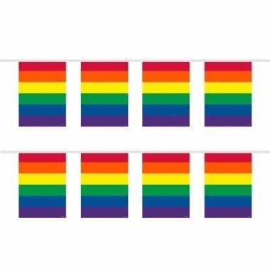 Feestwinkel | 2x stuks vierkante regenboog vlaggenlijnen van 10 meter