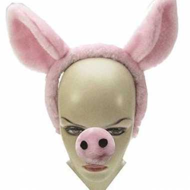 Feestwinkel | 2x verkleed diadeems met varkens oren en neus morgen am