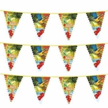 Feestwinkel   3x hawaii thema vlaggenlijn met grote vlaggetjes morgen