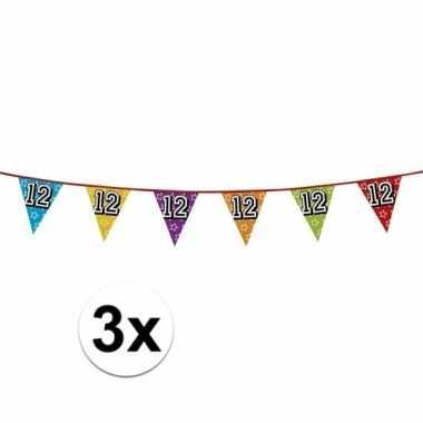 3x vlaggenlijn 12 jaar feestje