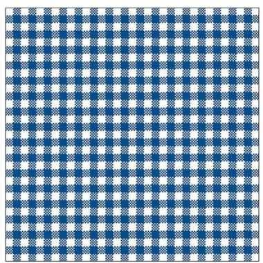 Feestwinkel | 40x feest servetten blauw wit geruit 33 x 33 cm morgen