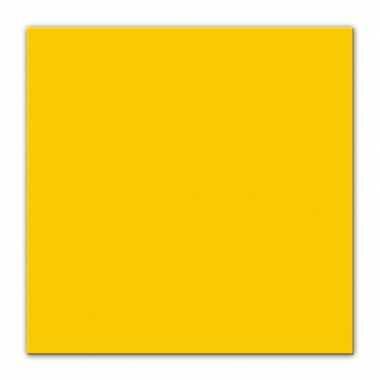 Feestwinkel | 50x feest servetten pasen geel 33 x 33 cm morgen amster