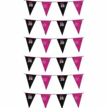 Feestwinkel | 6x sweet 16 meiden vlaggenlijn morgen amsterdam