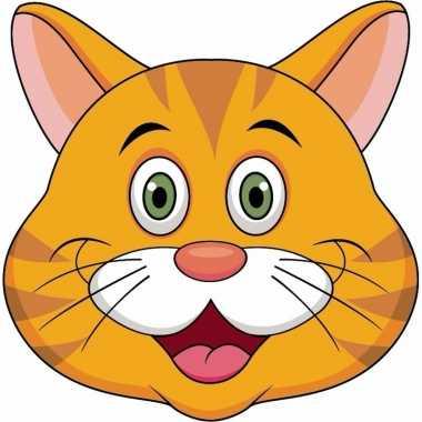 Feestwinkel   dieren masker oranje kat/poes voor kids morgen amsterda