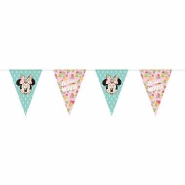 Feestwinkel | disney minnie mouse tropical vlaggenlijn kinderverjaard