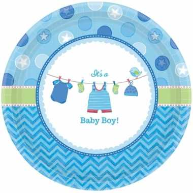Geboorte feest bordjes its a baby boy
