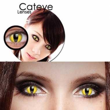Gele katten ogen partylenzen
