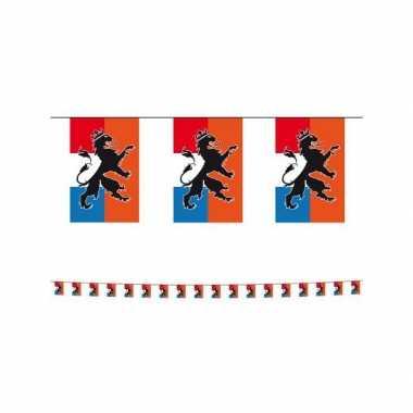 Holland vlaggenlijnen met leeuw 10 meter