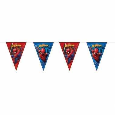 Feestwinkel | marvel spiderman vlaggenlijn kinderverjaardag morgen am