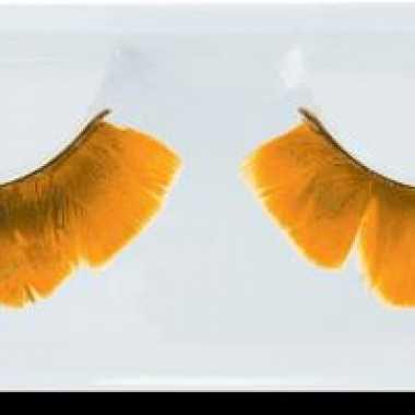 Feestwinkel | nep wimpers oranje veertjes morgen amsterdam