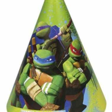 Papieren turtles hoedjes 6 stuks