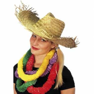 Feestwinkel | party hoed van stro morgen amsterdam