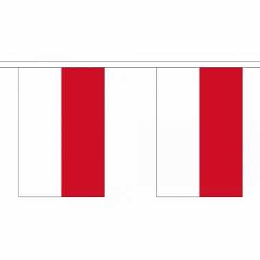 Polyester indonesie vlaggenlijn