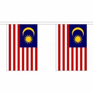 Polyester maleisie vlaggenlijn