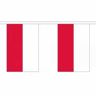 Polyester vlaggenlijn polen
