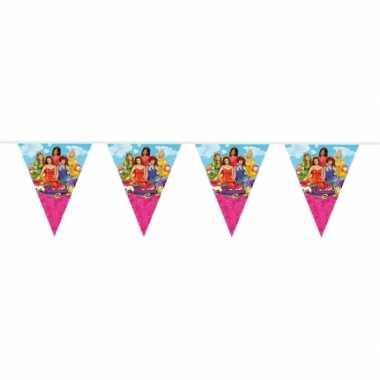 Prinsessia versiering vlaggenlijn 10 meter
