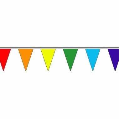 Feestwinkel | regenboog vlaggenlijn van stof 20 m morgen amsterdam