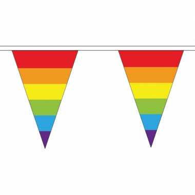 Feestwinkel | regenboog vlaggetjes van stof 20 m morgen amsterdam