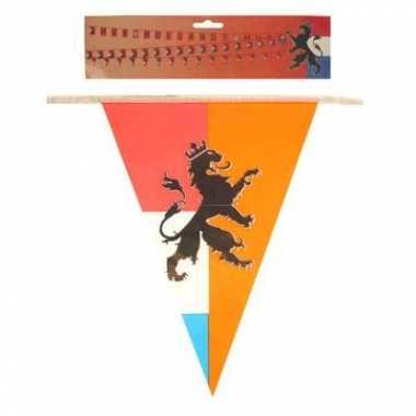 Vlaggenlijn holland met leeuw