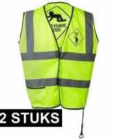 12x geel veiligheidsvest drunken people voor heren