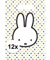 12x nijntje versiering eten uitdeelzakjes snoepzakjes 30 x 21 cm kinderverjaardag