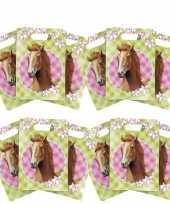 12x paarden thema feest verjaardag snoepzakjes