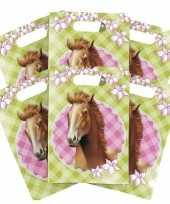 24x paarden thema feest verjaardag snoepzakjes