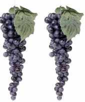 2x druiventros blauw 28 cm