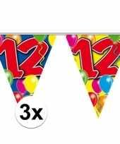 3x vlaggenlijn 12 jaar 10 meter