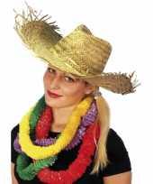 4x stuks hawaii of strandhoed voor volwassenen