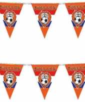 4x stuks oranje vlaggenlijn voetbal leeuw 10 meter