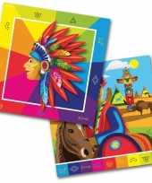 60x indianen feest servetten 33 x 33 cm kinderverjaardag