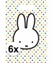 6x nijntje versiering eten uitdeelzakjes snoepzakjes 30 x 21 cm kinderverjaardag