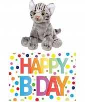 Cadeau setje pluche grijze kat poes knuffel 12 cm met happy birthday wenskaart