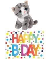 Cadeau setje pluche grijze kat poes knuffel 14 cm met happy birthday wenskaart