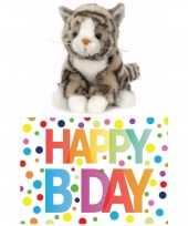 Cadeau setje pluche grijze kat poes knuffel 16 cm met happy birthday wenskaart