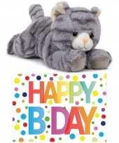 Cadeau setje pluche grijze kat poes knuffel 25 cm met happy birthday wenskaart