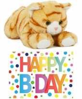 Cadeau setje pluche rood witte kat poes knuffel 25 cm met happy birthday wenskaart