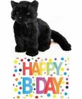 Cadeau setje pluche zwarte kat poes knuffel 20 cm met happy birthday wenskaart
