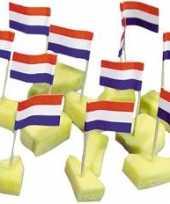 Cocktailprikkers nederlandse vlag