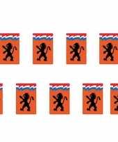 Dubbelzijdige oranje vlaggenlijn met leeuw