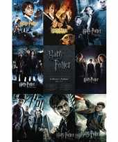 Harry potter maxi poster 61 x 91 cm