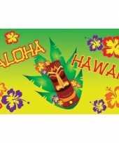 Hawaii vlaggen aloha