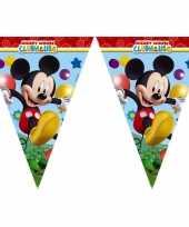 Mickey mouse vlaggetjeslijn 2 3 meter