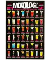 Shooters maxi poster 61 x 91 5 cm